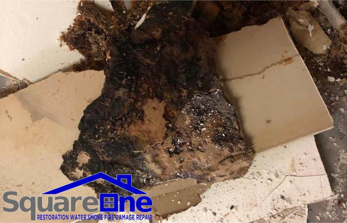 square one restortion water smoke fire damage repair phoenix