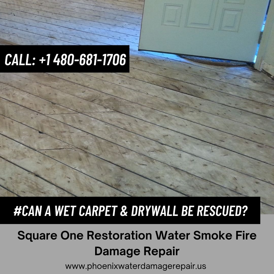 Can a Wet Carpet & Drywall be Rescued